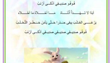 Photo of أنشودة – محفوظات : فوفو صديقي أحلى أرنب