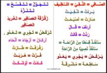 Photo of لغة عربية : مرادفات ( السنة الاولى)