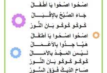 Photo of انشودة – محفوظات صاح الديك