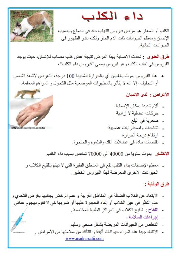 مدرستي كوم الوقاية من الامراض داء الكلب_001