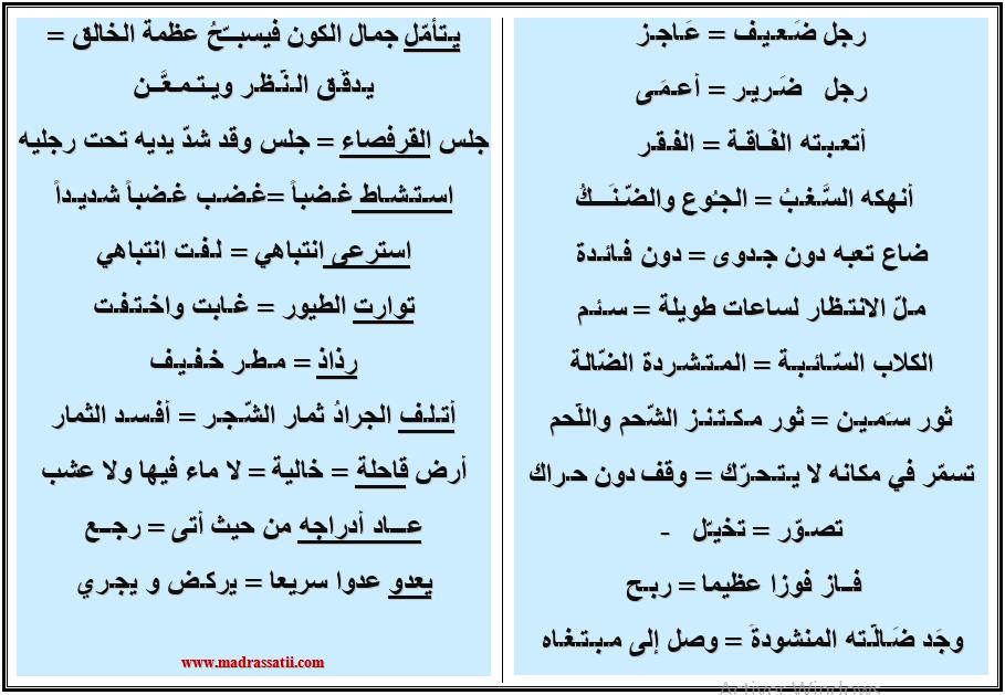 مفردات لغة عربية موقع مدرستي كوم