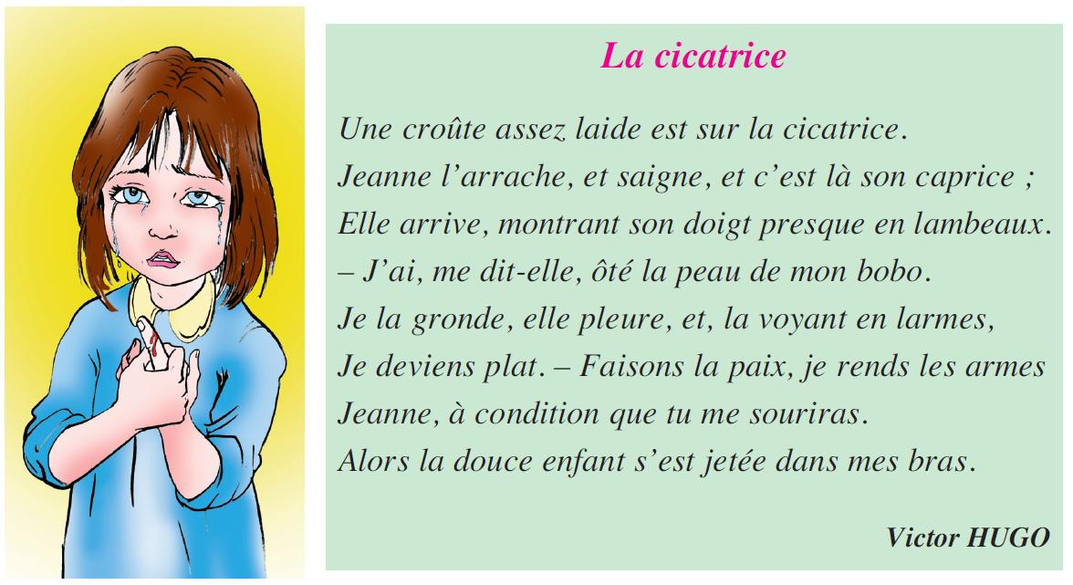 صورة Poème la cicatrice livre de 5 ème