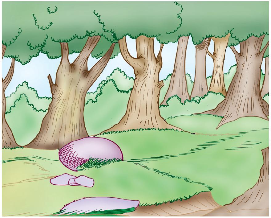 Poème l'arbre volant 1 livre de lecture 6 ème
