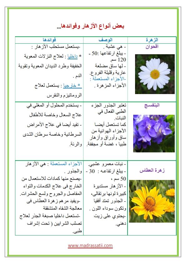 Azhar-types-des-fleurs-et-leurs-utilités_001