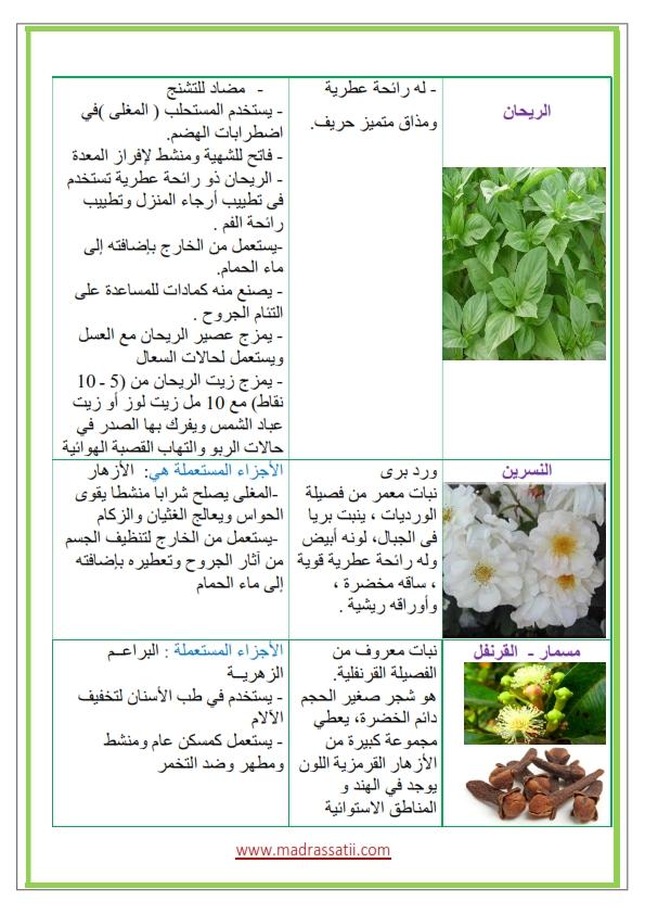 Azhar-types-des-fleurs-et-leurs-utilités_002