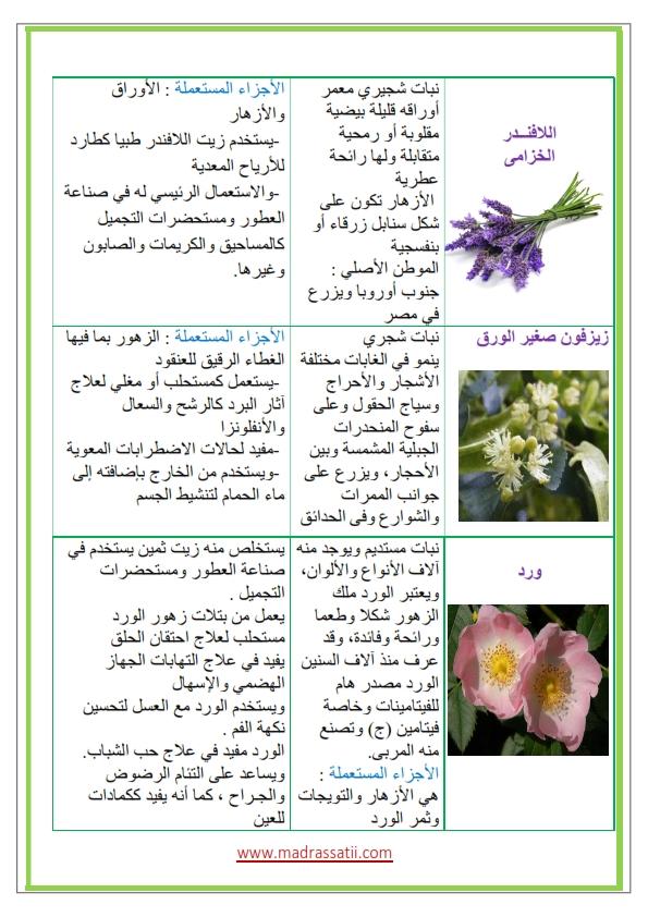 Azhar-types-des-fleurs-et-leurs-utilités_003