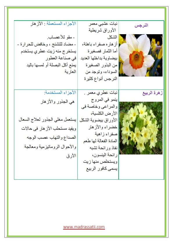 Azhar-types-des-fleurs-et-leurs-utilités_004