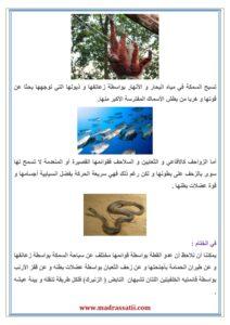 attana9ol 3enda alhayawanet madrassatii com_003