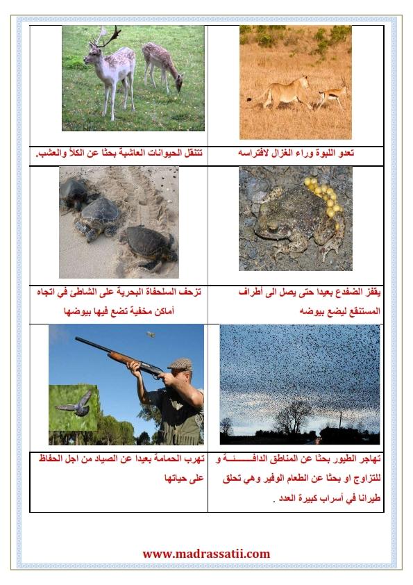 attana9ol 3enda alhayawen walensen madrassatii com_002