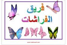 Photo of لعبة الفرق : فريق النسور – فريق الفراشات – فريق العصافير و فريق النوارس