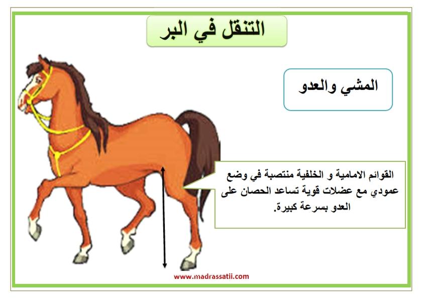attana9ol filbar souar madrassatii_001