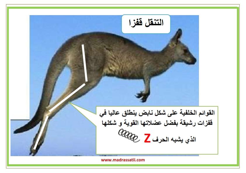 attana9ol filbar souar madrassatii_003
