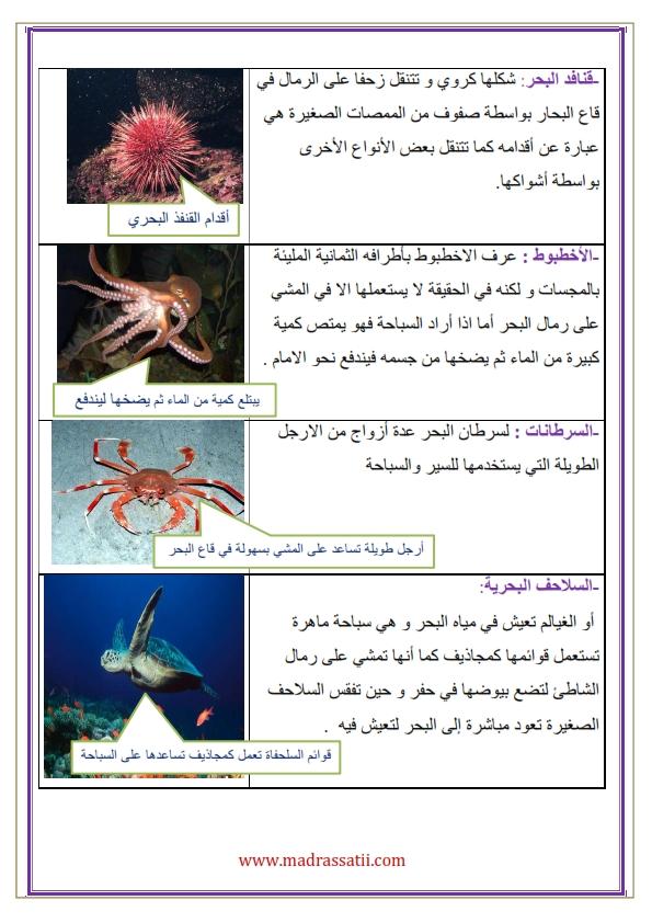attana9ol filme madrassatii com_003