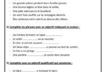 Photo of orthographe : accorder les adjectifs qualificatifs au sein du GN  exercice pour la classe de 5 eme