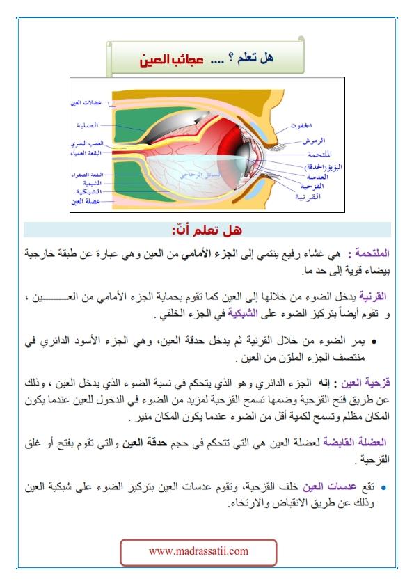 3ajeyb al3ayn madrassatii com_001