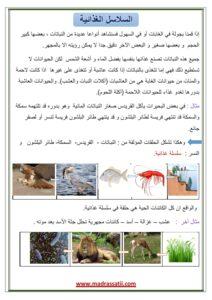 assalesel alghithe3ia madrassatii com_001