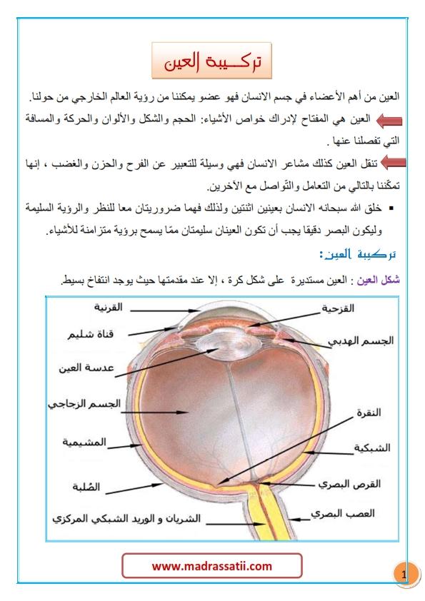 tarkibat al3ayn madrassatii com_001