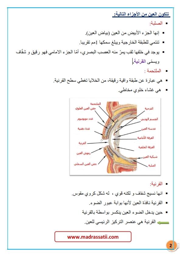 tarkibat al3ayn madrassatii com_002