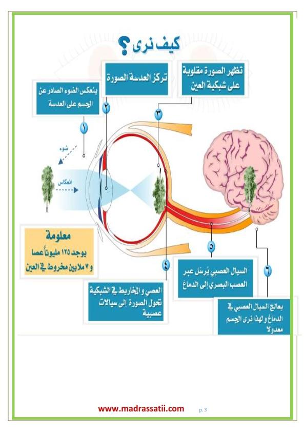 3amaliatt-arroia-ebn-alhaythem-madrassatii-com_003