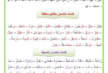 Photo of لغتي العربية : كلمات تتضمن مقاطع منغلقة و كلمات تتضمن تضعيفا