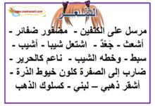 Photo of معلقات في معجم الصفات الخلقية : وصف الرأس و الجسم و الأطراف