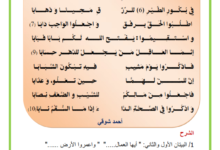 Photo of قصيدة أيها العمال للشاعر أحمد شوقي
