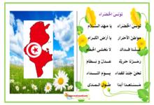 Photo of محفوظات تونس الخضراء يا مهد السلام