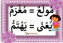 Photo of مفردات – أثري لغتي العربية