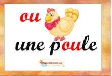 Photo of Affichages de classe : jardin des mot