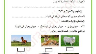 Photo of تمارين دعم في مادة الايقاظ العلمي السنة الثانية السداسي الاول
