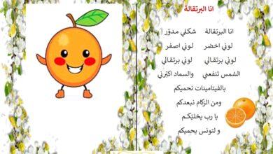 Photo of أنشودة : أنا البرتقالة ( روضة)
