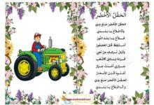 Photo of محفوظات الحقل الأخضر