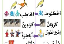 Photo of أصعب الجموع في اللغة العربية