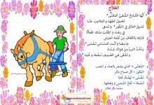 Photo of محفوظات ( قصيدة )  الفلاح