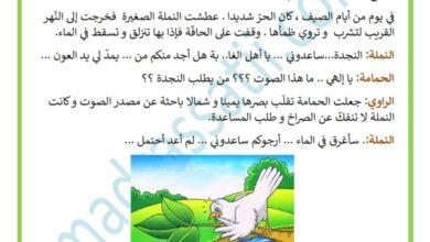 Photo of مسرحية الحمامة و النملة – محور التعاون