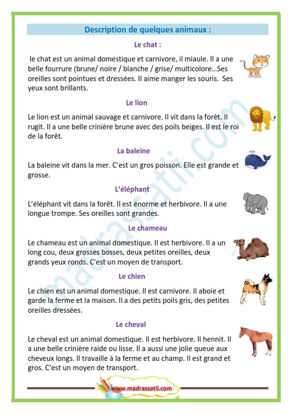 Opisywanie zwierząt - słownictwo 2 - Francuski przy kawie