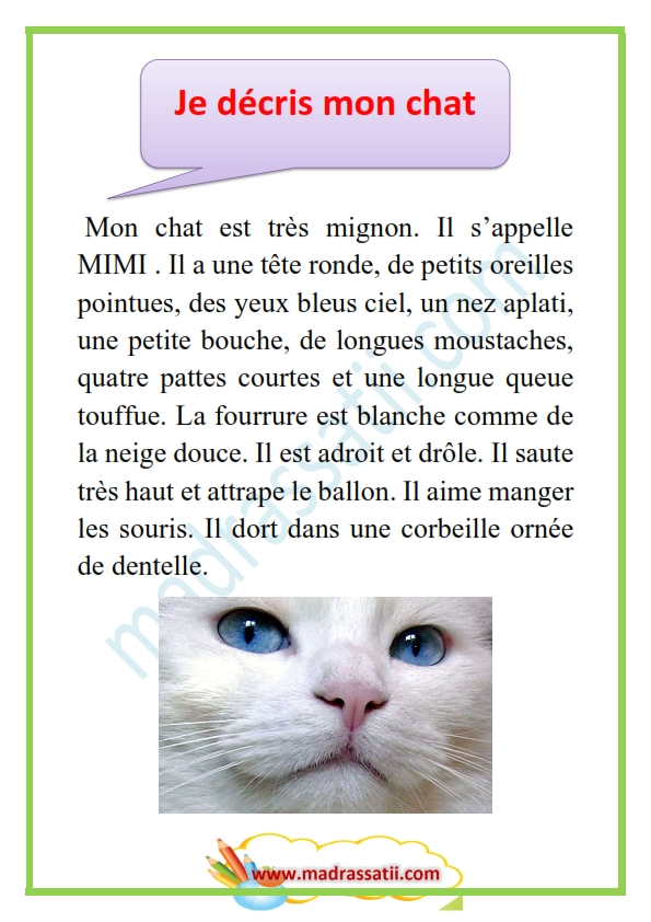 description d un animal domestique