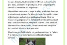 Photo of Description d'une chienne