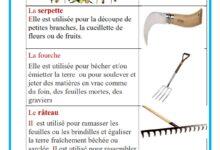 صورة les outils de paysan, d'agriculteur et de jardinier