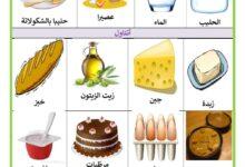 Photo of الأغذية : الوجبات الغذائية الرئيسية : فطور الصباح ، الغداء و العشاء