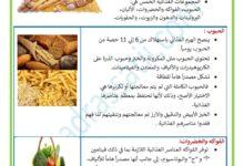 Photo of التغذية السليمة – المجموعات الغذائية – الهرم الغذائي