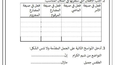 صورة تقييم عدد 2 السداسي الثاني في قواعد اللغة السنة الرابعة