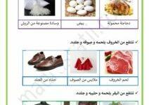 Photo of منافع الحيوانات