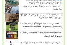 Photo of بعض الحلول لعلاج تلوث الماء – الوقاية من تلوث المياه