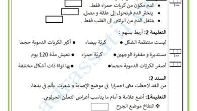 Photo of تقييم جزئي السداسي الثاني – مادة الايقاظ العلمي – السنة السادسة