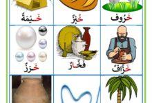 Photo of كلمات تحتوي حرف الخاء