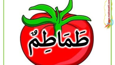 Photo of أسماء و صور الخضر – أسماء و صور الخضار