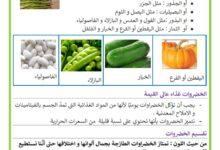 Photo of الخضراوات وفوائدها    – فوائد الخضر