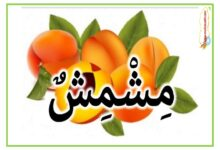 Photo of أسماء و صور الغلال – اسماء و صور الفواكه