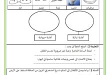Photo of تقييم مكتسبات التلاميذ – السداسي الثاني   ايقاظ علمي السنة الثانية